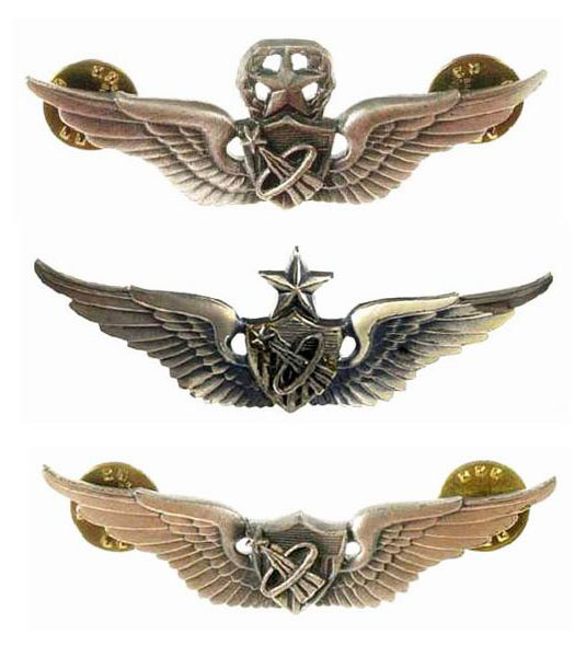 astronaut wings insignia - photo #15
